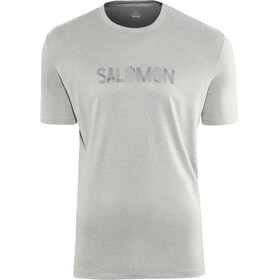 Salomon Agile Graphic Camiseta Hombre, alloy